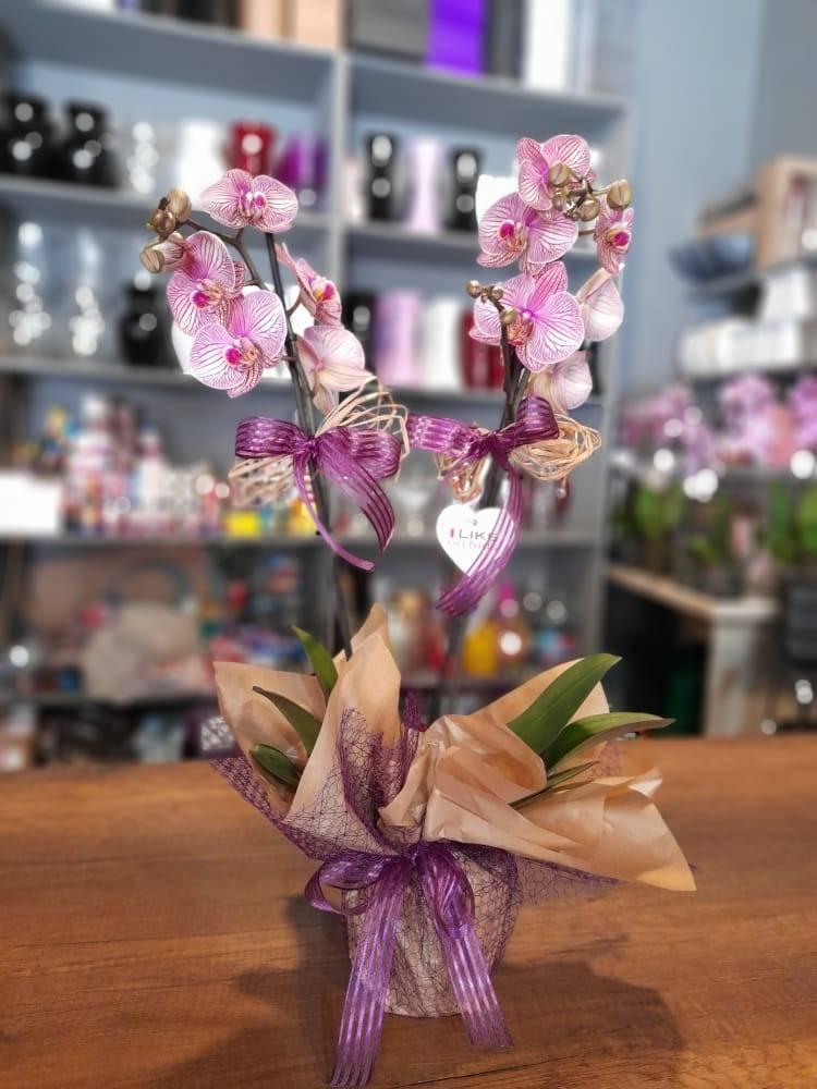 Anne İçin Özel Çiçek Siparişi - 798