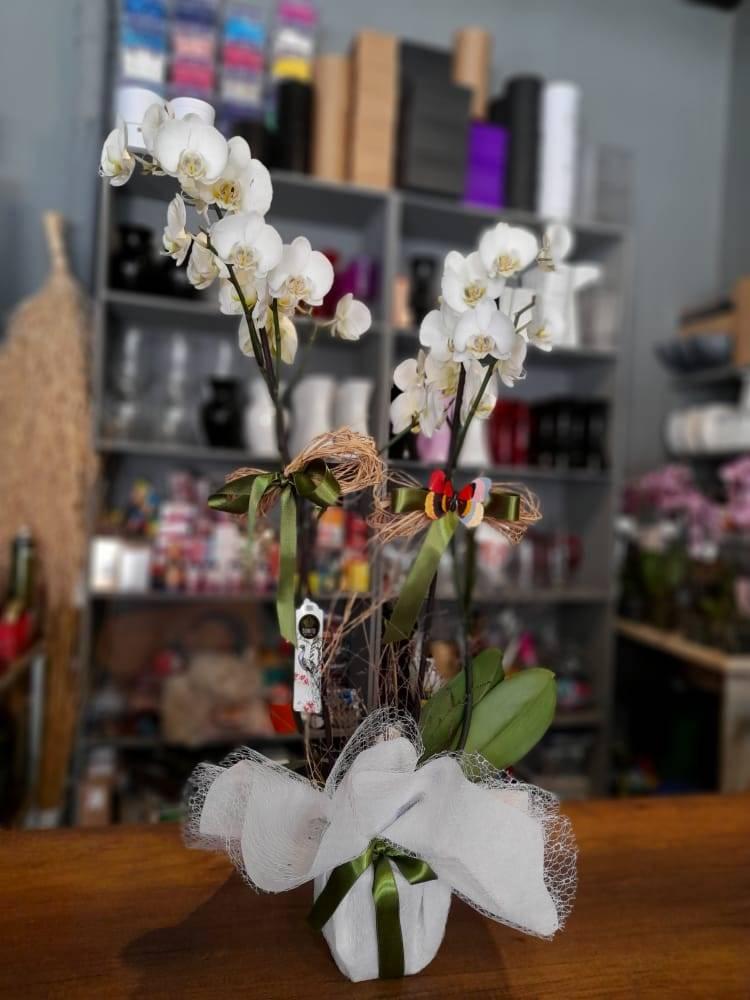 Anneye Gönderilecek En Güzel Çiçek Gönder - 70