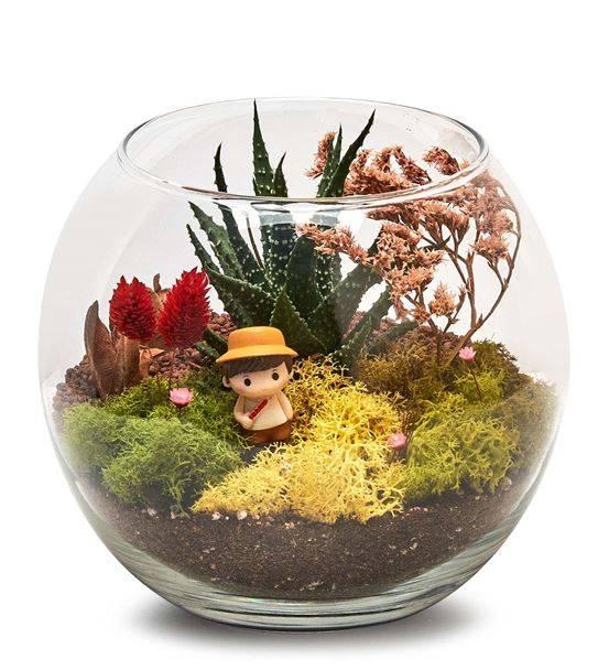 Cam Fanus Minyatür Teraryum Bahçesi