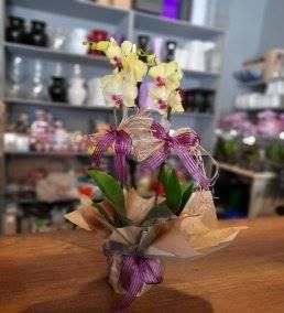 Anne İçin Özel Çiçek Siparişi - 411
