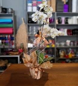 Anneler Gününe Çiçek Gönder - 898