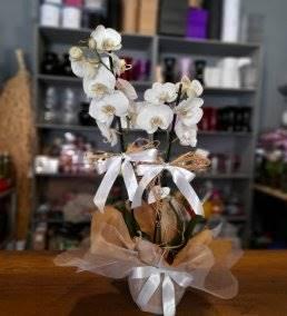 Anneler İçin Çiçek Siparişi - 458