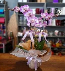Anneler İçin Çiçek Siparişi - 597