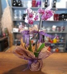 Anneler İçin Çiçek Siparişi - 975