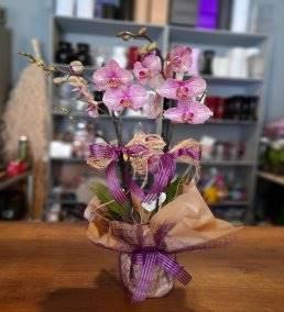 Anneye Gönderilecek En Güzel Çiçek Gönder - 122
