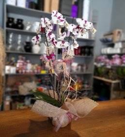 Anneye Özel Çiçek Gönder - 750