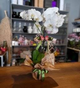 Anneye Özel Çiçek Gönder - 84