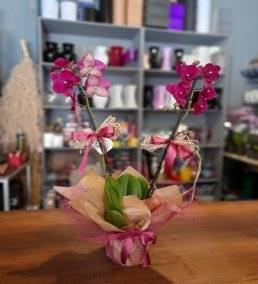 Anneye Özel Çiçek Gönder - 970