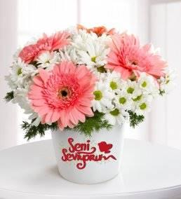 Seni Seviyorum Mesajlı Gerbera ve Papatya Aranjmanı