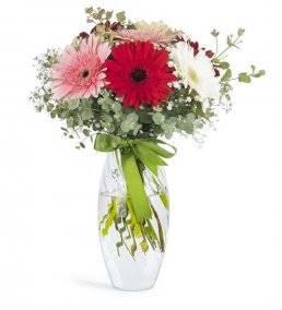 Vazoda Mevsim Çiçekleri